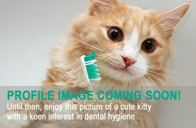 Dental Professional
